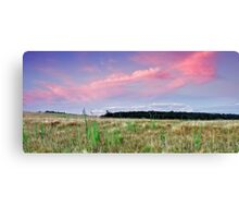 The Grassy Knoll Canvas Print
