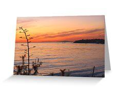 California coastline from Laguna Beach at sunset Greeting Card