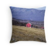 Barn At Belle Grove Plantation Throw Pillow