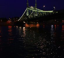 Liberty Bridge. The Danube River in Budapest at night. Number 3 by Anatoly Lerner
