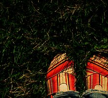 Shoes in the Grass by Kerri Swayze