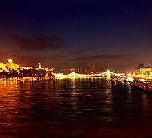 Castle Palace. The Chain Bridge. The Danube River in Budapest at night. Number 1 by Anatoly Lerner