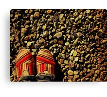 Shoes on the Rocks Canvas Print
