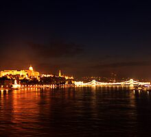 Castle Palace. The Chain Bridge. The Danube River in Budapest at night. Number 3 by Anatoly Lerner