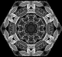 Kaleidoscope Ice Edged by Gillian Cross