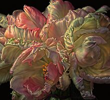 I Love You ...Bunches by Wendi Donaldson