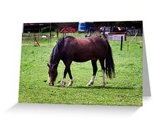 Equine Ecstasy Greeting Card