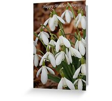 Happy Mother's Day Snowdrops Greeting Card