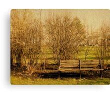Bench Canvas Print