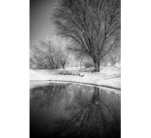 Pond-er Photographic Print