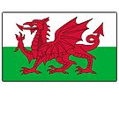 WALES, Welsh, Cymru, Welsh Flag, Pure & simple. Red Dragon of Wales by TOM HILL - Designer
