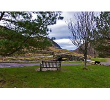A Seat with a View Photographic Print