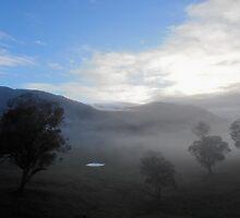 Morning Mist Ascending, Killimicat, Southern NSW, Australia. by kaysharp