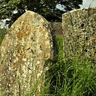 Gravestones by SimplyScene