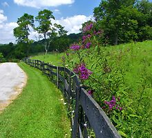 River Road Butler, Kentucky by Ron Russell