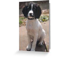 Benson at 12 weeks Greeting Card