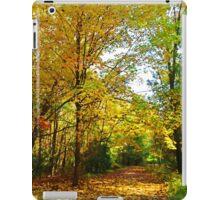 Along a Yellow Path iPad Case/Skin
