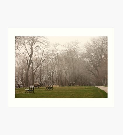 Lake Park Foggy Landscape Art Print