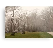 Lake Park Foggy Landscape Metal Print