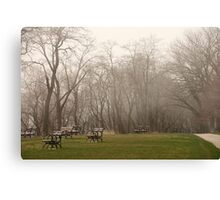 Lake Park Foggy Landscape Canvas Print