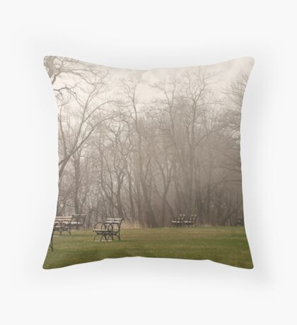 Lake Park Foggy Landscape Throw Pillow