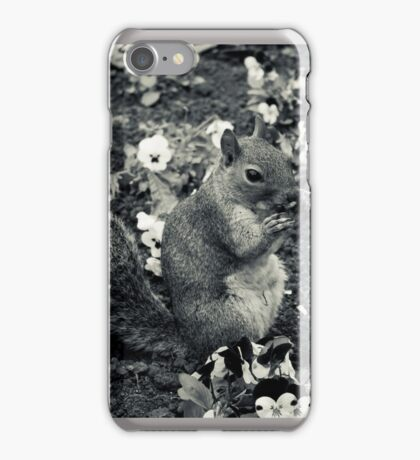 A squirrell in a flowerbed iPhone Case/Skin