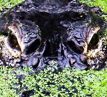 Alligator by Michaela1991