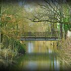 My Local Monet's Bridge. by Marilyn Grimble