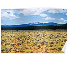 Mountains and Sage 2 Poster
