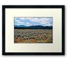 Mountains and Sage 3 Framed Print