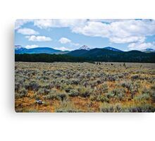 Mountains and Sage 3 Canvas Print