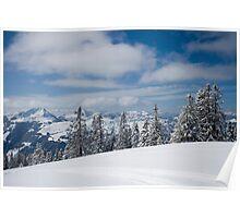 Austrian snow Poster