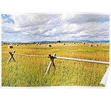 Fence, Bales Poster