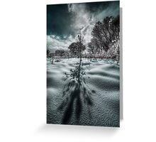 Long Shadow of Winter Greeting Card