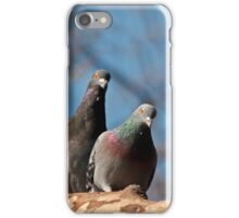 Two pigeons iPhone case iPhone Case/Skin
