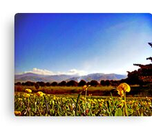 nature at it's best Canvas Print