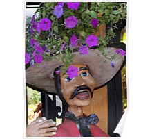 The Strange Cap - El Sombrero Raro Poster