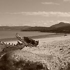 Talmine Shipwreck, Sutherland, Scotland by ScotLandscapes