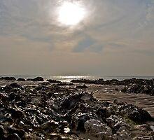 Low Tide by John Thurgood