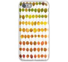 Colours of Autumn iPhone Case/Skin