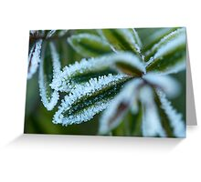 Hebe Frost Greeting Card