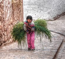 All In A Days Work - Chinchero, Peru by Edith Reynolds