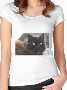 curious cat Women's Fitted Scoop T-Shirt