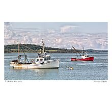 Downeast Delights Photographic Print