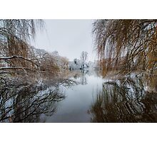 Reflections of Winter Willows Photographic Print