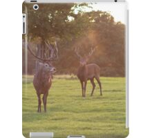 Deer and rays iPad Case/Skin
