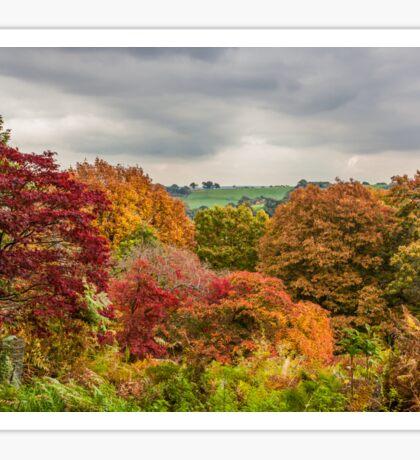 Autumn Colours, Autumn Skies Sticker