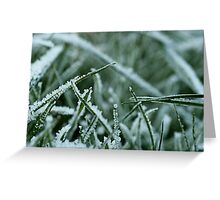 Even Grass can be Pretty Greeting Card