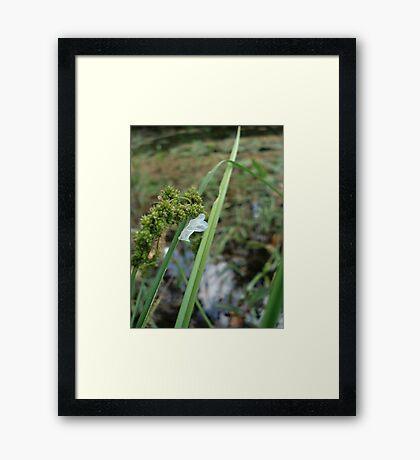 LEFT BEHIND Framed Print