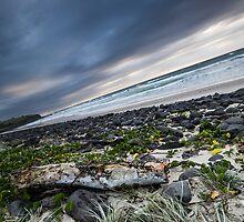 Sunrise over Sharpes Beach by Daniel Rankmore